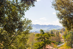 View of hills of Italian countryside framed by tree Stock Photos