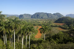 View of hills and mountains in Vinales, Cuba Stock Image