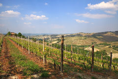 View on hills and vineyards of Piedmont, Italy. Royalty Free Stock Images