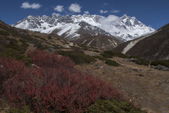 View of the Himalayas (Lhotse on the right) from Somare Royalty Free Stock Photography
