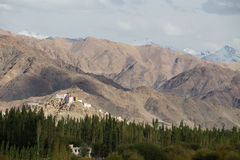 View of the Himalayas mountains and green valley from the Thikse Stock Image