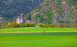 View of the historic Burg Katz castle on the Rhine Royalty Free Stock Images