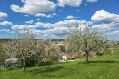 View of the historical old town of Altensteig Royalty Free Stock Photography