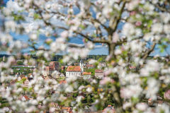 View of the historical old town of Altensteig Stock Photos