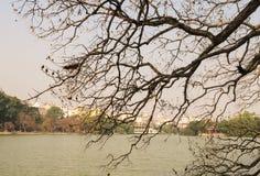 View of Hoan Kiem lake in Hanoi downtown Royalty Free Stock Image
