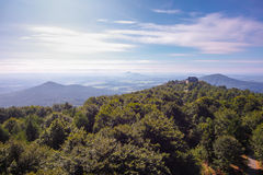 View from the Hochwald Royalty Free Stock Images