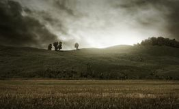 View of horror field background Stock Photography