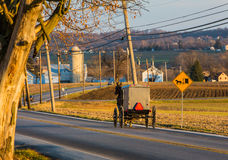 View of horse and buggy Royalty Free Stock Images