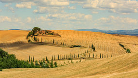 View of house with cypress trees in a field in the tuscan region Royalty Free Stock Photo