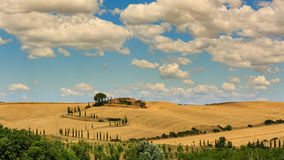 View of house with cypress trees in a field in the tuscan region Royalty Free Stock Images