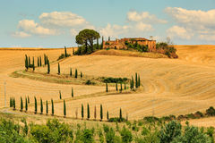 View of house with cypress trees in a field in the tuscan region Stock Photo