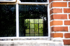 View through a house in a wild garden Stock Photo