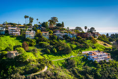 View of houses of a hillside in Laguna Beach  Royalty Free Stock Images