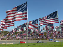 View of hundreds of American flags on a grassy lawn in Southern. California. Indistinct vehicles can be seen on a road which passes by Royalty Free Stock Images