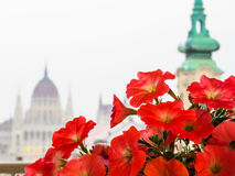 View of the Hungarian Parliament as blurred background Stock Photography