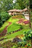 View of hut terrace and beautiful garden Stock Photos