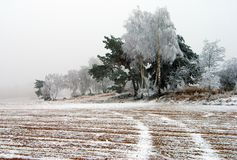 View of ice covered field with rural road and wood Stock Photos