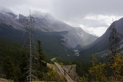 View from icefields parkway near columbia icefield Royalty Free Stock Photo