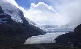 View from icefields parkway to the columbia icefield Stock Images