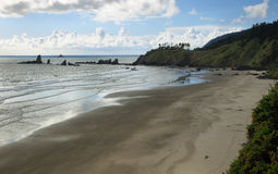 View of Indian beach in Ecola state park Stock Photography