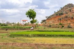 View of the indian rural landscape, Puttaparthi, Andhra Pradesh, India. Copy space for text. Stock Photo