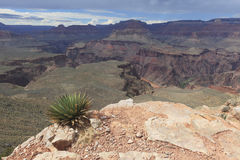 View of Inner Grand Canyon Royalty Free Stock Photo