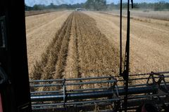 The view from inside the cab of an agricultural harvester Stock Photos