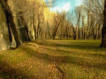 The view inside forest, trees at fall. Castle wall. Autumn royalty free stock photography