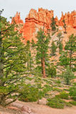 View from insise of Bryce Canyon. Stock Photography
