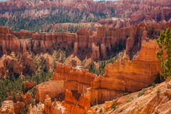 Inspiration Point in Bryce Canyon Stock Images