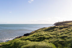 View of Irish Sea and Green Grassy Coastal Cliffs Royalty Free Stock Photo