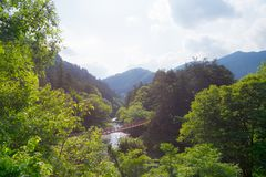 The ishibune bridge in Japan. View of the ishibune bridge at the Akigawa valley in the west of Tokyo, Japan Royalty Free Stock Photography