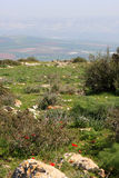 View on Israel valley. Panoramic view on Israel valley from Gilboa mountain Royalty Free Stock Photo