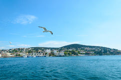 View of Istanbul by the sea. Stock Images