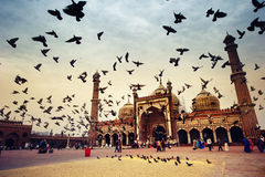 View of Jama Masjid. Royalty Free Stock Photography