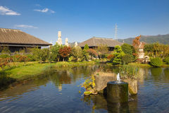 View on Japanese pond Royalty Free Stock Image