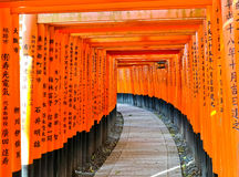 View of the Japanese torii path in Kyoto, Japan. Royalty Free Stock Photography