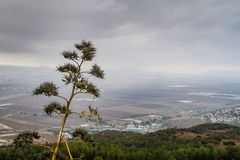 View of the Jezreel Valley from Mount Carmel, Israel Stock Photos
