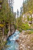 View at the Johnston creek in Johnston Canyon of Banff National Park in Canadian Rocky Mountains - Canada. View at the Johnston creek in Johnston Canyon of Banff royalty free stock photos