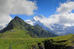 View at the Jungfrau from Maennlichen. The famous Jungfrau with glacier seen from Maennlichen royalty free stock photo