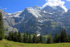 View at Jungfrau and Silberhorn Switzerland. View at the famous mountain, the Jungfrau with glacier. Mountain landscape in Switzerland , Berner Oberland, Bernese stock images