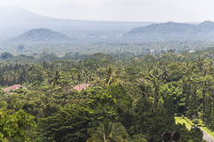 View on jungle around Borobudur temple Stock Images