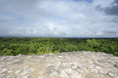 View of jungle from Mayan temple at Yaxha, Guatemala Royalty Free Stock Image