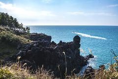 View of the Jusangjeollidae. Jusangjeolli are stone pillars piled up along the coast and is a designated cultural monument of Jeju. Island. Jusangjeolli Cliff royalty free stock photography