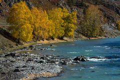 View of Katun River in Altai Mountains, Russia. Nature. Royalty Free Stock Image