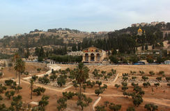 View of Kidron Valley with Garden of Gethsemane Church of All Nations Stock Photos
