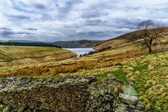 View of the Kinder Scout Reservoir with old drystone wall and single tree royalty free stock images