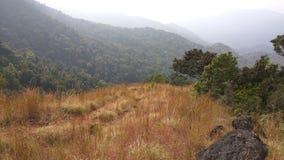 View from Kodachadri Trekking Trail Stock Photo