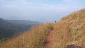 View from Kodachadri Trekking Trail Royalty Free Stock Images