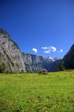 View from the Koenigssee towards the alps Stock Photos